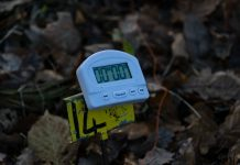 Field Target clock